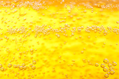 Thousands of small bubbles. Thousands of small bubbles in beer Stock Photography
