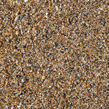 Thousands of small shiny wet colorful pebbles. Royalty Free Stock Photo