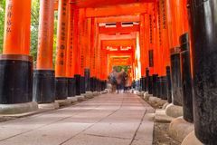 Thousands of torii in the Fushimi Inari Shrine in Kyoto Stock Images