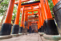 Thousands of torii in the Fushimi Inari Shrine in Kyoto Stock Photography