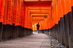 Thousands of torii in the Fushimi Inari Shrine in Kyoto Stock Image