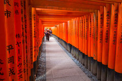 Thousands of torii in the Fushimi Inari Shrine in Kyoto Royalty Free Stock Image