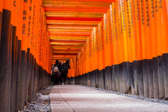 Thousands of torii in the Fushimi Inari Shrine in Kyoto Royalty Free Stock Images