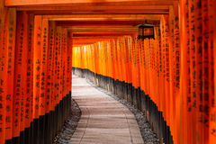 Thousands of torii gates at Fushimi Inari Shrine in Kyoto. Japan Royalty Free Stock Photo