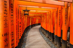 Thousands of torii gates in Kyoto, Japan. Thousands of torii gates at Fushimi Inari Shrine in Kyoto, Japan Stock Photo