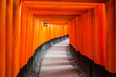 Thousands of torii gates in Kyoto, Japan Stock Photo