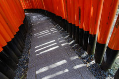Thousands of Torii Stock Images