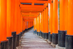 Thousands of vermilion torii gates at Kyoto Royalty Free Stock Images
