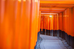 Thousands of vermilion torii gates Royalty Free Stock Photography
