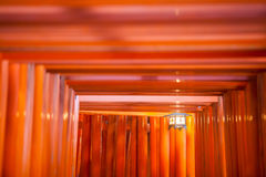 Thousands of vermilion torii gates at Kyoto Stock Image