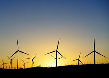 Thousands of wind turbines at sunset Royalty Free Stock Photos