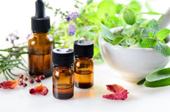 Thérapie alternative avec des herbes et des huiles essentielles Photo libre de droits