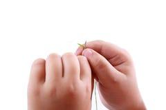 Thread a needle stock photos