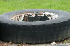 threadless轮胎 库存照片