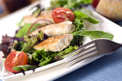 Threads of grilled chicken on garden salad royalty free stock photo
