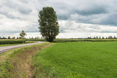 Threatening clouds above a rural area Royalty Free Stock Photos