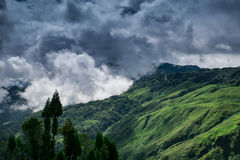 THREATNING APPEAL. SHOT WITH MY D610 IN DARJEELING, INDIA Stock Photo