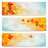 Three abstract autumn banners with color leaves. Royalty Free Stock Photography