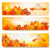 Three abstract autumn banners with colorful leaves Royalty Free Stock Photography