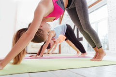 Three active girls exercising together in fitness studio. Keep fit. Three active young girls exercising together while having group training and spending time in stock photography