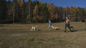 Three adult athlete jogging with three racing dog. Three professional athlete man and two women at his ranch outside of town, arranged a competition with your stock video