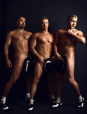 Three adult men in a good sports tone Stock Images
