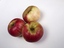 Three Akane apple. On white background Stock Photography