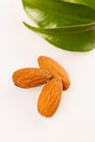 Three almond kernels, healthy snack  on white background Stock Photography