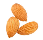 Three almond nuts Stock Image