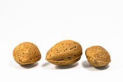 Three almonds Royalty Free Stock Image