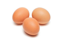 Three animal eggs Royalty Free Stock Photography