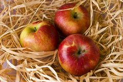 Three apples. In a hay Stock Photo