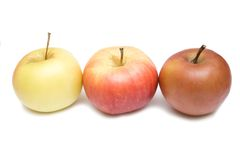Three apples Royalty Free Stock Photo
