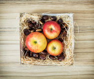 Three apples and chestnuts in the box, healthy food Stock Photos