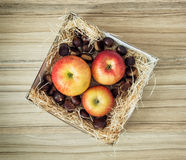 Three apples and chestnuts in the box Stock Photo