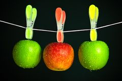 Three apples with clothespins in a row Stock Image