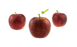 Three apples. Isolated in a white background Royalty Free Stock Image