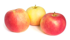Three apples isolated on white. Background royalty free stock photos