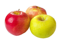 Three apples of a last year's crop Royalty Free Stock Images