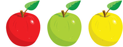 Three Apples with Leaf Stock Image
