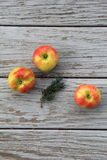 Three apples on old gray barn board Stock Image