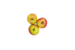 Three apples on white Stock Photography