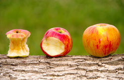 Three apples. On a wooden background royalty free stock photos