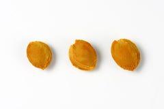 Three apricot stones Stock Photo