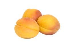 Three apricots Stock Image