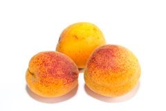 Three apricots Stock Photos