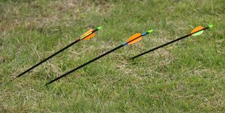 Three Archery Arrows. Stock Photography