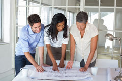 Three architects looking at blueprints Stock Photography