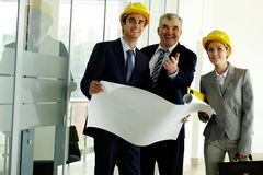 Three architects Royalty Free Stock Photography