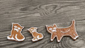 Cute baked gingerbread sweets. Cat shapes on wood background stock photography